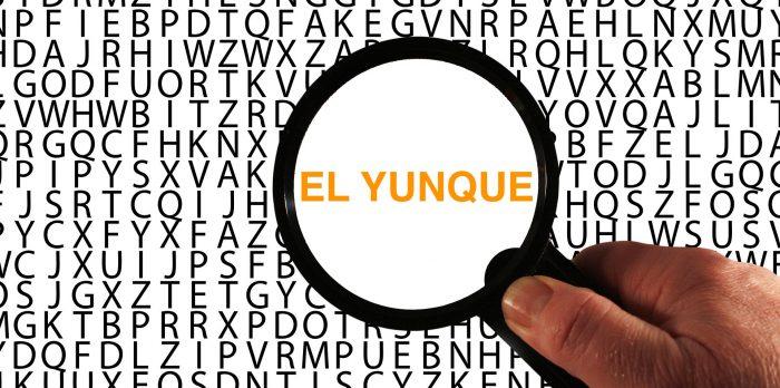 3 claves para reconocer las iniciativas de El Yunque